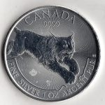 canadian_silver_cougar_front